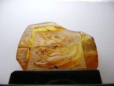 Genuine Baltic amber George the Victorious Pd-42