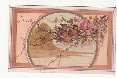 O W Kimball & Co Druggists Apothecaries Lewiston Maine Robins Nest Card c 1880s
