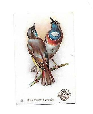Arm & Hammer Saleratus Soda BLUE THROATED WARBLER Vict Card 1880s