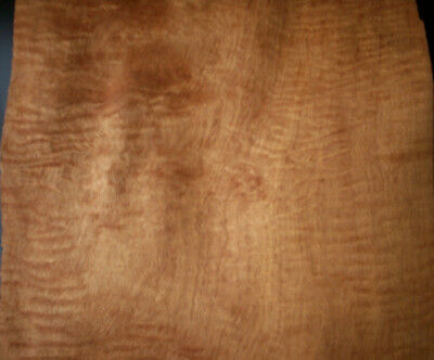5 x FIDDLEBACK EUCALYPT Veneer Sheets