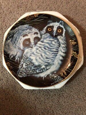 New Long-eared Owls Baby Owls Danbury Mint Collector Plate