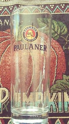 """Paulaner 7.5"""" Gold accents German Beer Glass 0.5L"""