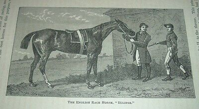c1900 Antique Print THE ENGLISH RACE HORSE ECLIPSE with Rider