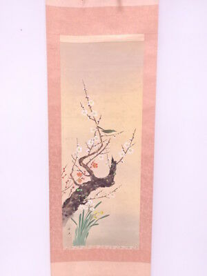 3810495: Japanese Wall Hanging Scroll / Hand Painted / Ume & Narcissus