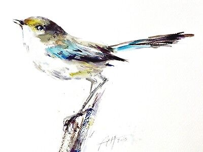 bird draw fairy wren watercolor original paintng art illustration FABULOUS ART