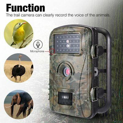 HD 1080P Hunting Trail Camera 12MP Wildlife Scouting Cam Night Vision Video IP65