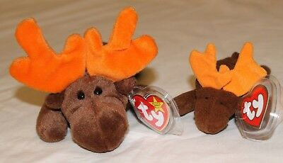 TY Beanie Babies - Chocolate the Moose & McDonald's Teenie Moose  Mint condition