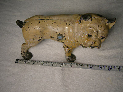 Vintage Large Heavy Antique Cast Iron Garden French Bulldog Cute Face