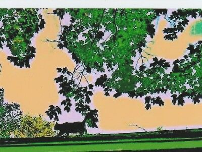 Halloween Black Cat on a Roof w/ Leaves ACEO Art Trading Card ATC PRINT