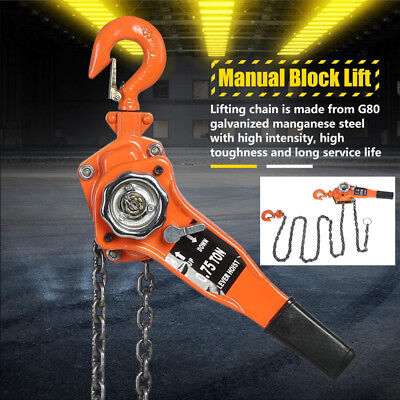Heavy Duty 750KG 3M Manual Chain Block Hoist Tackle Engine Lifting Pulley 0.75T