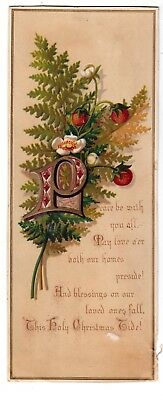 Peace Be With You All Pray Holy Christmas Tide Strawberries Vict Card 1880s