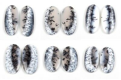 Details about  /Beautiful DENDRITIC LIMESTONE Gemstone 1 Ps Choose From Variation # S39274