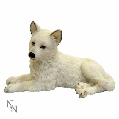 Nemesis Now - Winter Wolf Pup Figurine - 12cm - H1163D5 - New