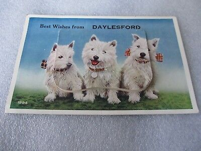 Vintage Foldout View Novelty Postcard, three dogs, best wishes from Daylesford