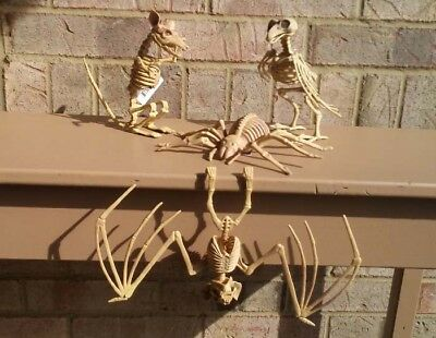 Skeleton Rat Crow Spider Hanging Vampire Bat Set of 4 Creatures Bones Halloween