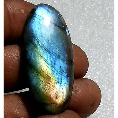 43.30 Ct Natural Multi Flashy Labradorite Sparkling Oval Cabochon Loose Gemstone