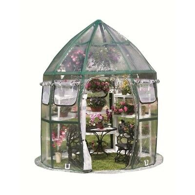Conservatory Pop-Up Greenhouse 8 Ft. x 8 Ft.