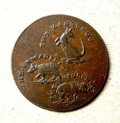 Antique 1795 1st depiction of a Kangaroo on a coin / T Hall Taxidermist token