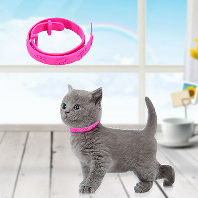 Flea Collar Pet Cat Kitten Dog Adjustable Rubber Necklace Anti Tick Pest Control