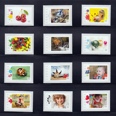 PICTURE POSTAGE = Full set of 12 FRAMES DESIGN = MNH stamps Canada 2013 [p4f12]