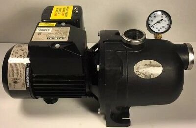 Everbilt 3/4 HP Shallow Well Jet Pump by Everbilt, 552 Gallons Per Hour (J200A3)