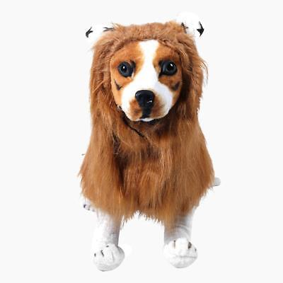 Pet Costume Lion Mane Wig Festival Dress up Mascot Halloween Clothes for Dog Cat