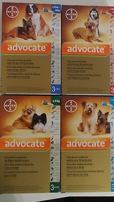 ADVOCATE Antiparasitaires Spot On chiens / dogs S M L XL - 3 Pipettes poux/puces