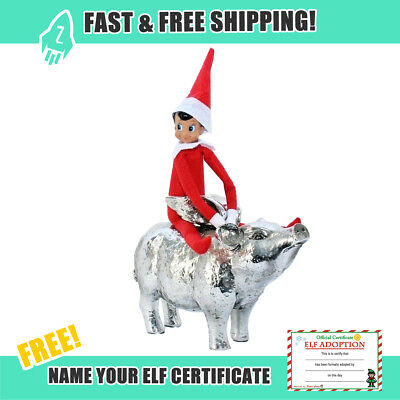 Elf Doll Christmas Boy Red With Name Certificate Other Colors Blue Green Camo