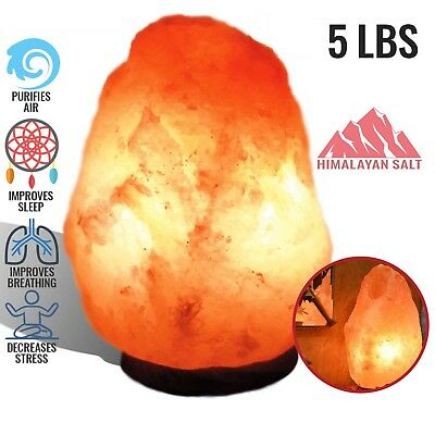HIMALAYAN SALT LAMP Hand Carved Natural Crystal Light Ionic Rock Air Purifier
