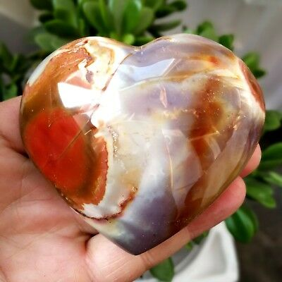 294.7g Natural Energy Stone Sea Stone Ancient Rock Specimen Heart-shaped  H09