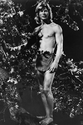 The World's Greatest Athlete Jan-Michael Vincent Bare Chested Tree 24X36 Poster