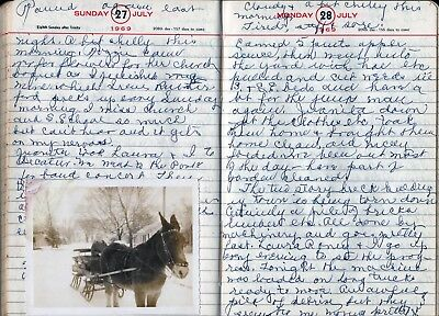 1969 HANDWRITTEN WOMAN'S DIARY JOURNAL ~ Bethany, Moultrie Co., Illinois History