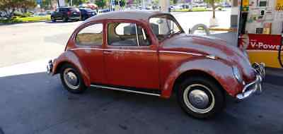 1966 Volkswagen Beetle - Classic  1966 VW BUG ALL ORIGINAL WITH 37K ORIGINAL MILES - MUST SEE IT