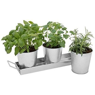Galvanized Window Boxes Planter Pots With Tray Set - Indoor Herb Garden Utensil