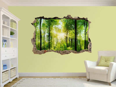 Beautiful trees in forest photo Hole in wall sticker wall mural (39809307)