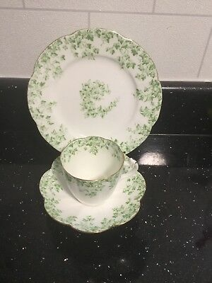 Wileman Foley Trio Lily Shape Trailing Ivy Pattern 1891
