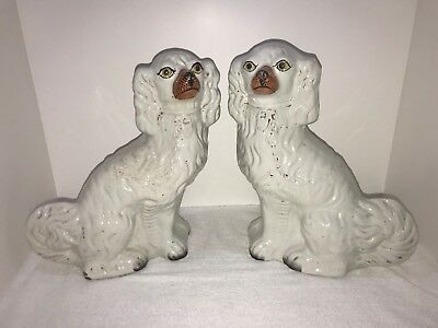 Antique Pair Staffordshire Dogs Excellent Condition
