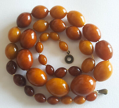 56g Antique Egg Yolk Butterscotch Natural Baltic Amber Necklace Bernstein 琥珀色