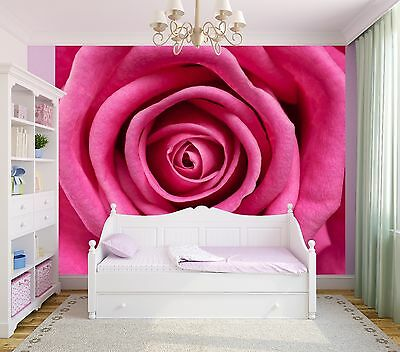 8625306 Floral Red rose close-up photo Wallpaper wall mural