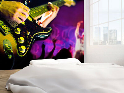 Guitar player and public photo Wallpaper wall mural (14766075)