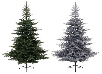 Grandis Fir Green Christmas Xmas Tree - Plain or Frosted Snowy - Various Sizes