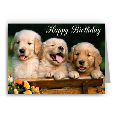 Golden Retriever Puppies Birthday Card Dog 2 00 Picclick Uk