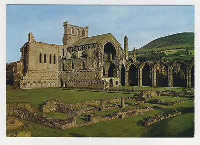 Old Postcard - Melrose Abbey, Abbey Church & the Ruined Cloister - Unposted 0211