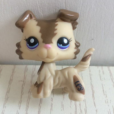 Littlest Pet Shop LPS Collie Dog Puppy Blue Eyes Cream Tan Brown #2210