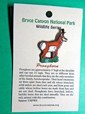 Pronghorn Bryce Canyon National Park Wildlife Series Lapel Hat Pin (54)