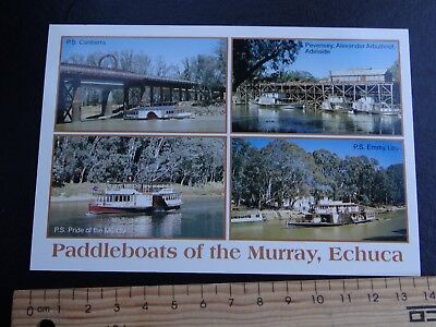 1 x PADDLE BOATS OF THE MURRAY ECHUCA VICTORIA AUSTRALIA POSTCARD SW16