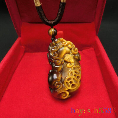 CHINESE Tiger Eye JADE PENDANT Feng Shui Dragon Pi Xiu Money Coin necklace