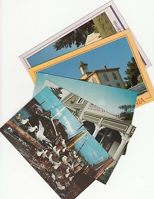 Lot of 5 Bodega Bay California Vintage Era Postcards Sonoma County Birds Museum