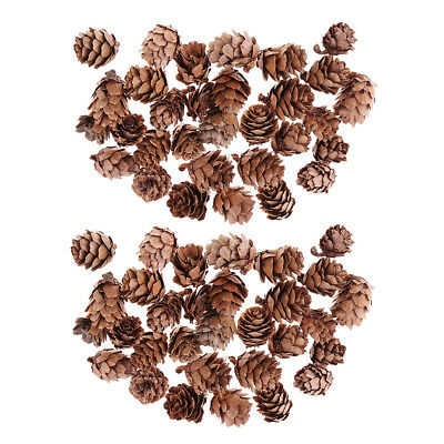 60pcs Mini Natural Dried Pine Cones for Christmas Tree Hanging Decoration