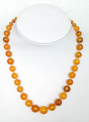 19g Antique Natural Baltic Amber Butterscotch Egg Yolk Amber Necklace amber